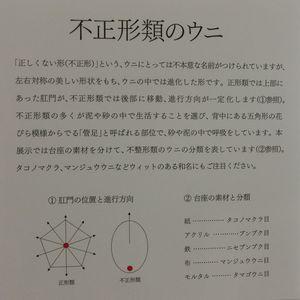 Unizoukeibi150801f
