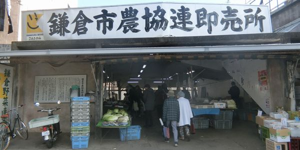 Kamakura_brand160111a