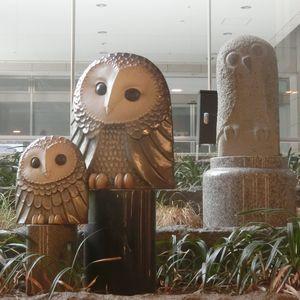 Owltower04
