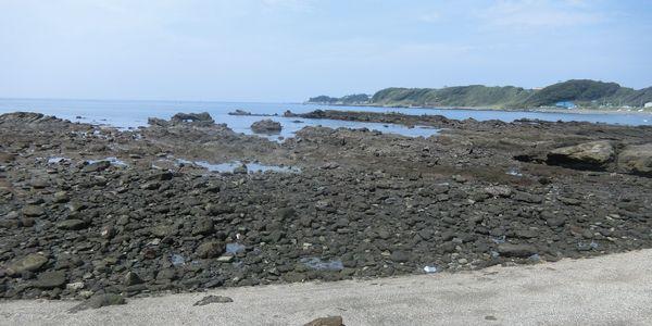Wadanagahama160917f