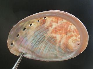 Tokobusi160911f
