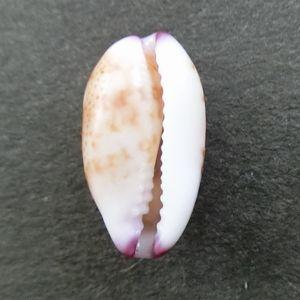 Tumabeni180603c