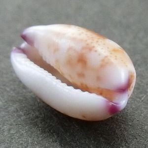 Tumabeni180603e