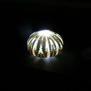 Unilamp08