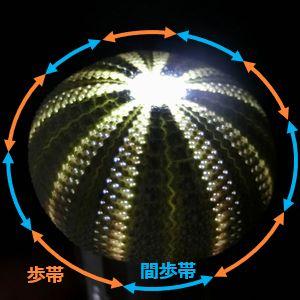 Unilamp_bafun01a